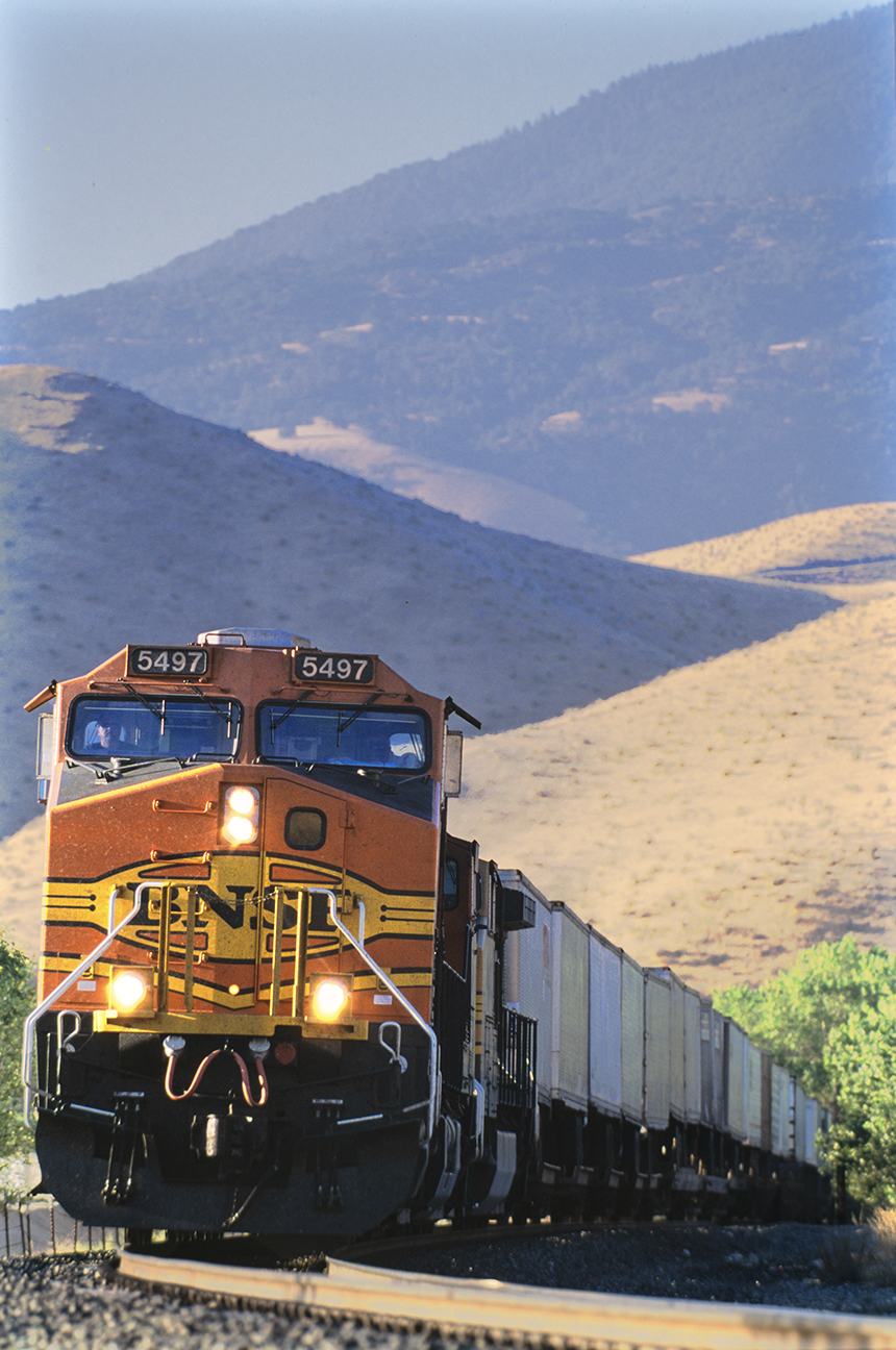 <i>Ilmon</i> &nbsp Tehachapi Mountains
